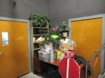 plastic plants and other props in boxes on a desk crammed into a corner